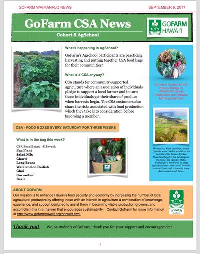 Windward AgSchool Cohort 8 CSA news + corn