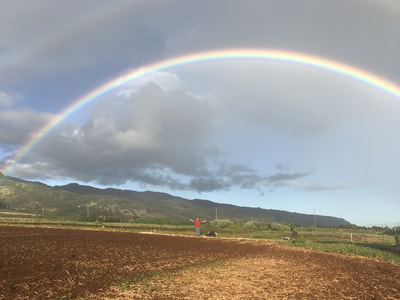 And their off!  North Shore AgPro Cohort 5 gets started in the field with a rainbow to celebrate