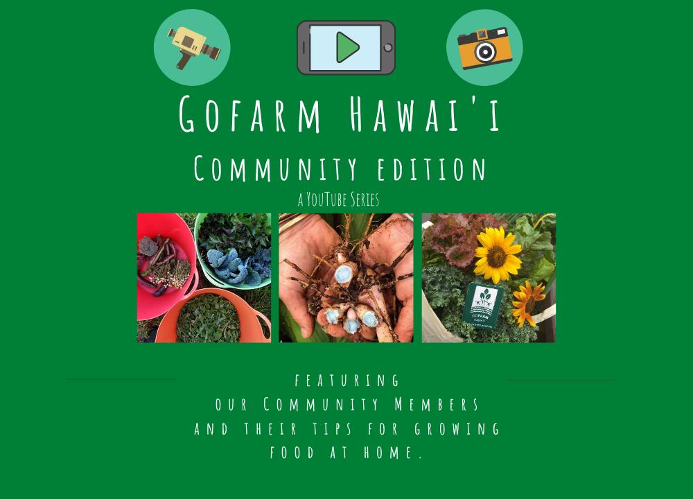 GoFarm Hawai'i Community Edition